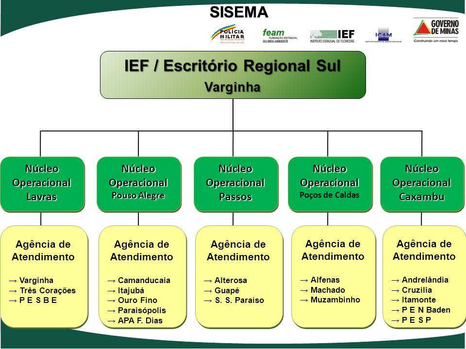IEF / Escritório Regional Sul