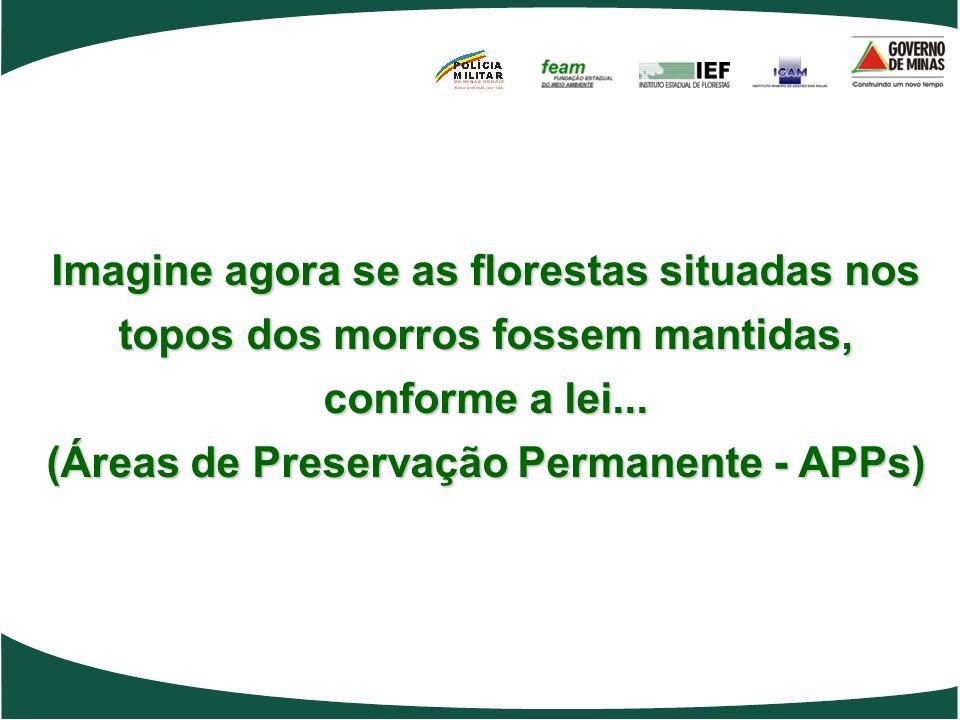(Áreas de Preservação Permanente - APPs)