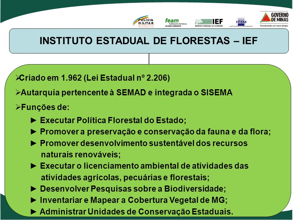 INSTITUTO ESTADUAL DE FLORESTAS – IEF