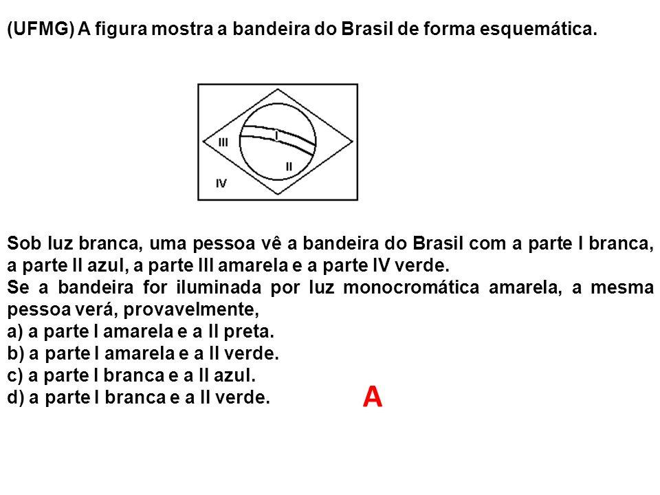 A (UFMG) A figura mostra a bandeira do Brasil de forma esquemática.