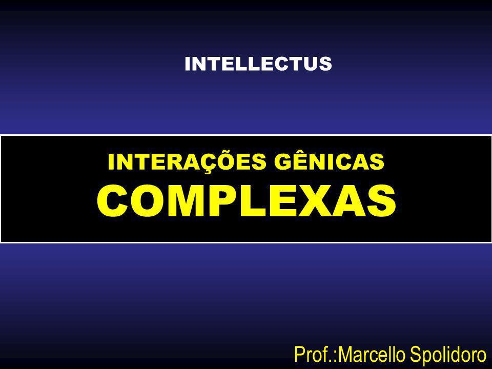 INTERAÇÕES GÊNICAS COMPLEXAS