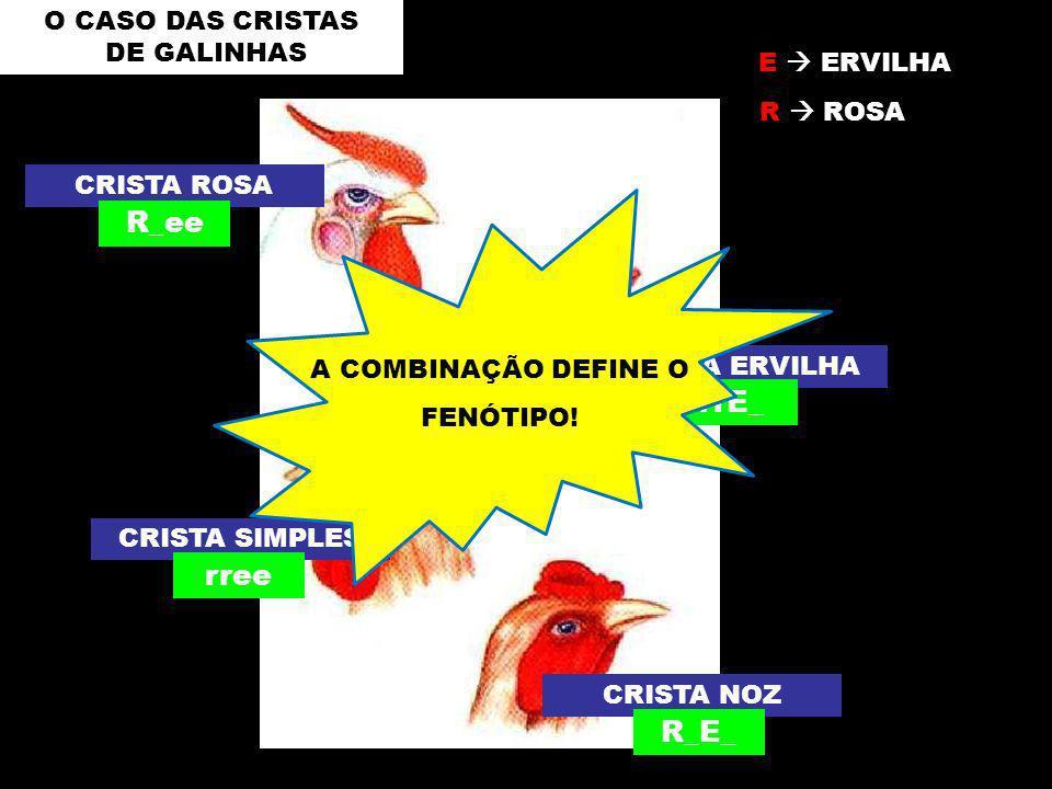 R_ee rrE_ rree R_E_ O CASO DAS CRISTAS DE GALINHAS E  ERVILHA