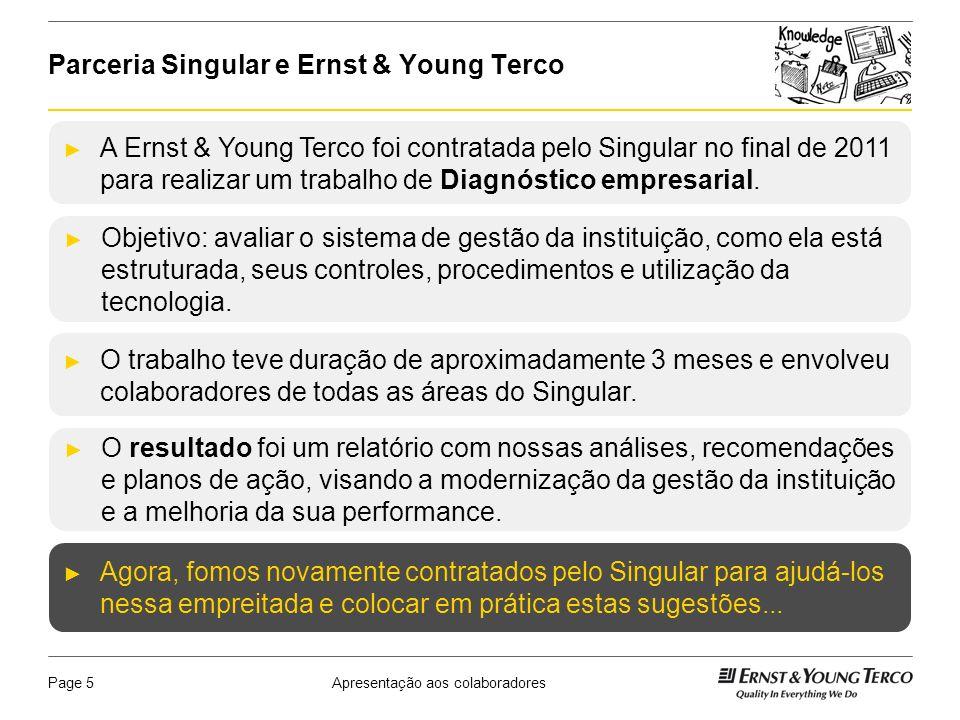 Parceria Singular e Ernst & Young Terco