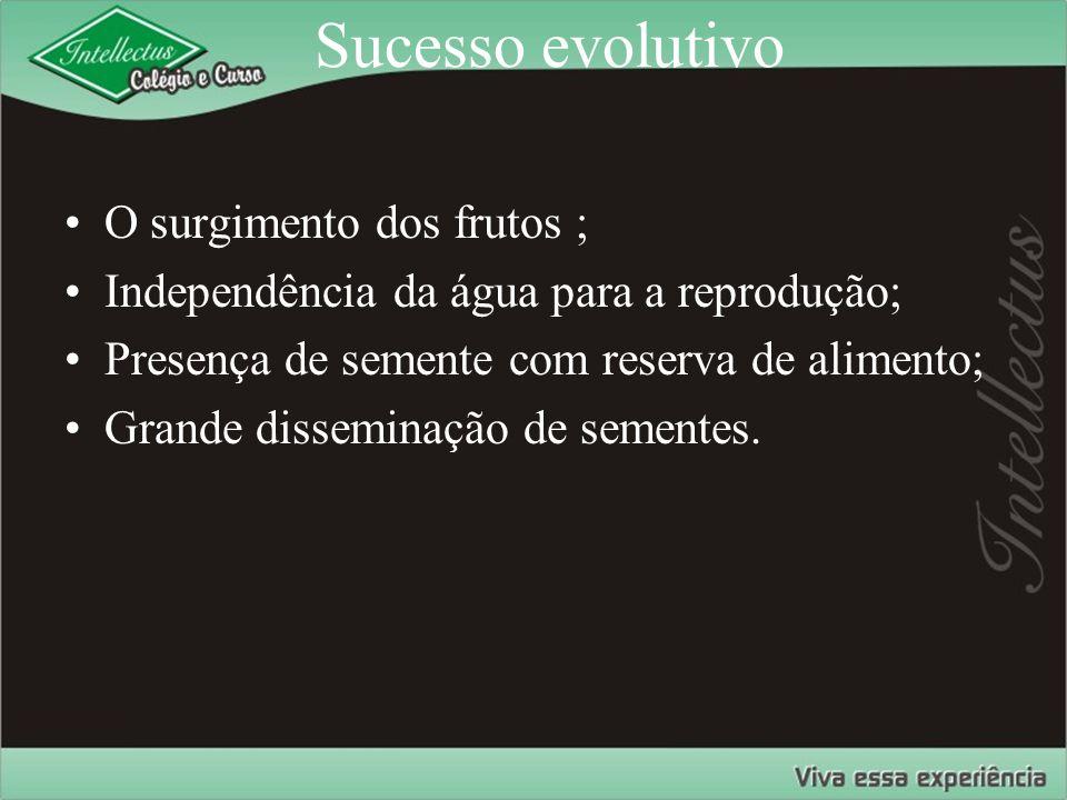 Sucesso evolutivo O surgimento dos frutos ;