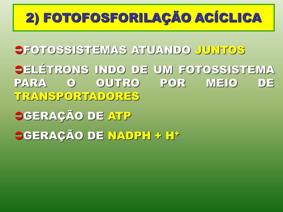 2) FOTOFOSFORILAÇÃO ACÍCLICA