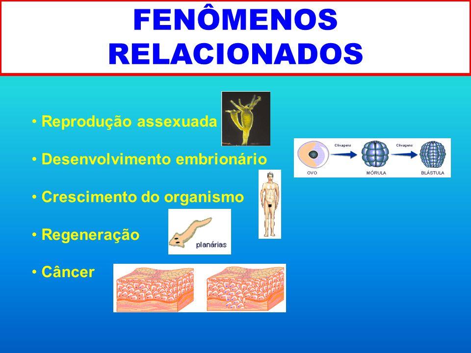 FENÔMENOS RELACIONADOS