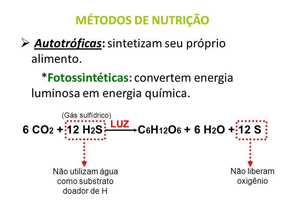 Não utilizam água como substrato doador de H