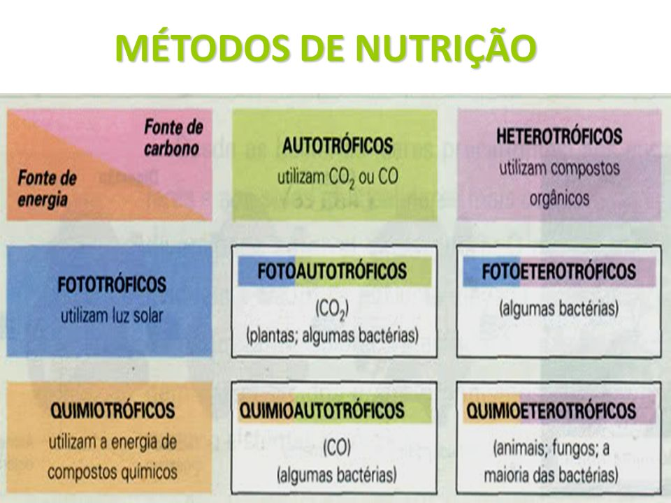 MÉTODOS DE NUTRIÇÃO