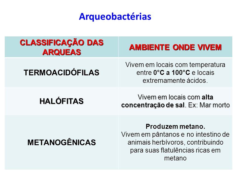 CLASSIFICAÇÃO DAS ARQUEAS