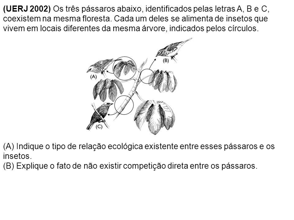 (UERJ 2002) Os três pássaros abaixo, identificados pelas letras A, B e C, coexistem na mesma floresta. Cada um deles se alimenta de insetos que vivem em locais diferentes da mesma árvore, indicados pelos círculos.