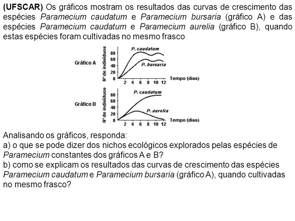 (UFSCAR) Os gráficos mostram os resultados das curvas de crescimento das espécies Paramecium caudatum e Paramecium bursaria (gráfico A) e das espécies Paramecium caudatum e Paramecium aurelia (gráfico B), quando estas espécies foram cultivadas no mesmo frasco