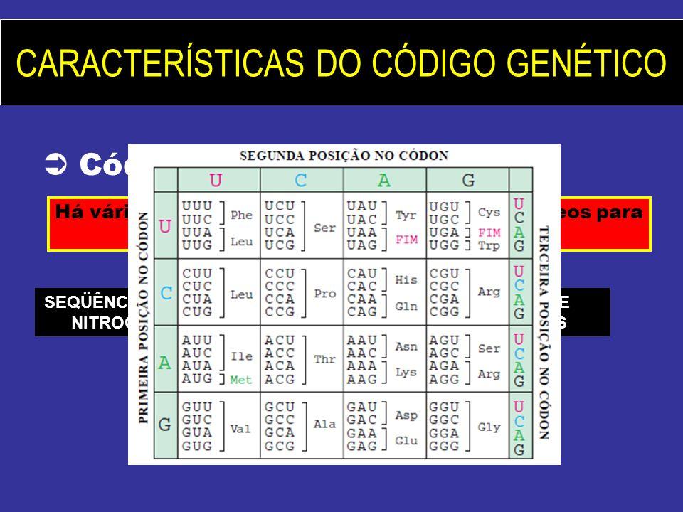 SEQÜÊNCIA DE BASES NITROGENADAS SEQÜÊNCIA DE AMINOÁCIDOS
