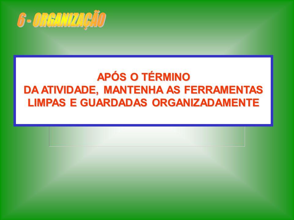 6 - ORGANIZAÇÃO APÓS O TÉRMINO