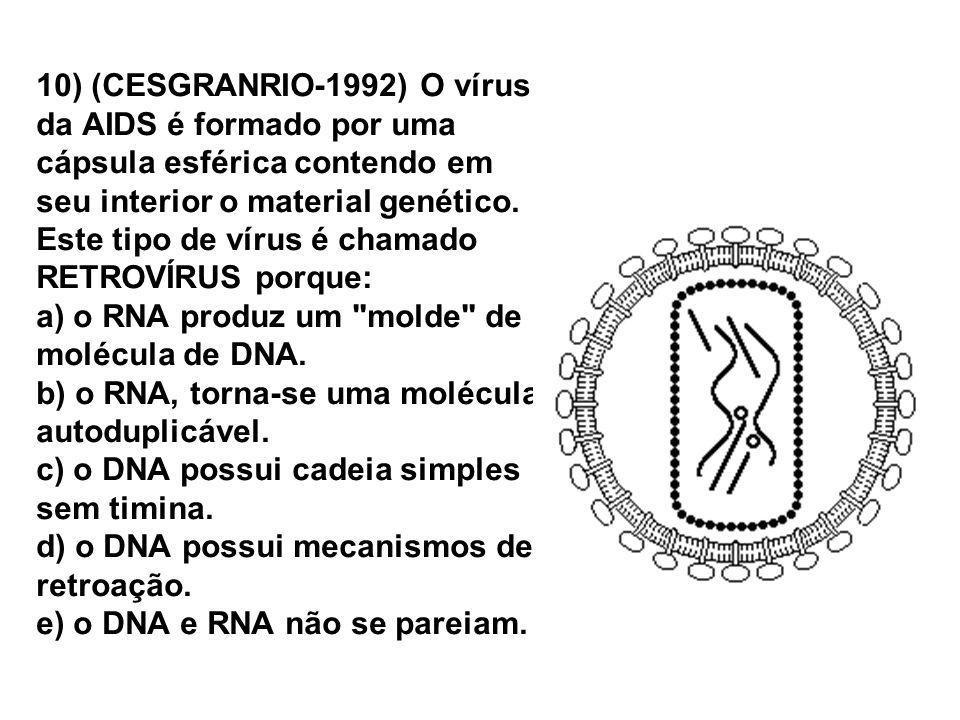 10) (CESGRANRIO-1992) O vírus da AIDS é formado por uma cápsula esférica contendo em seu interior o material genético.