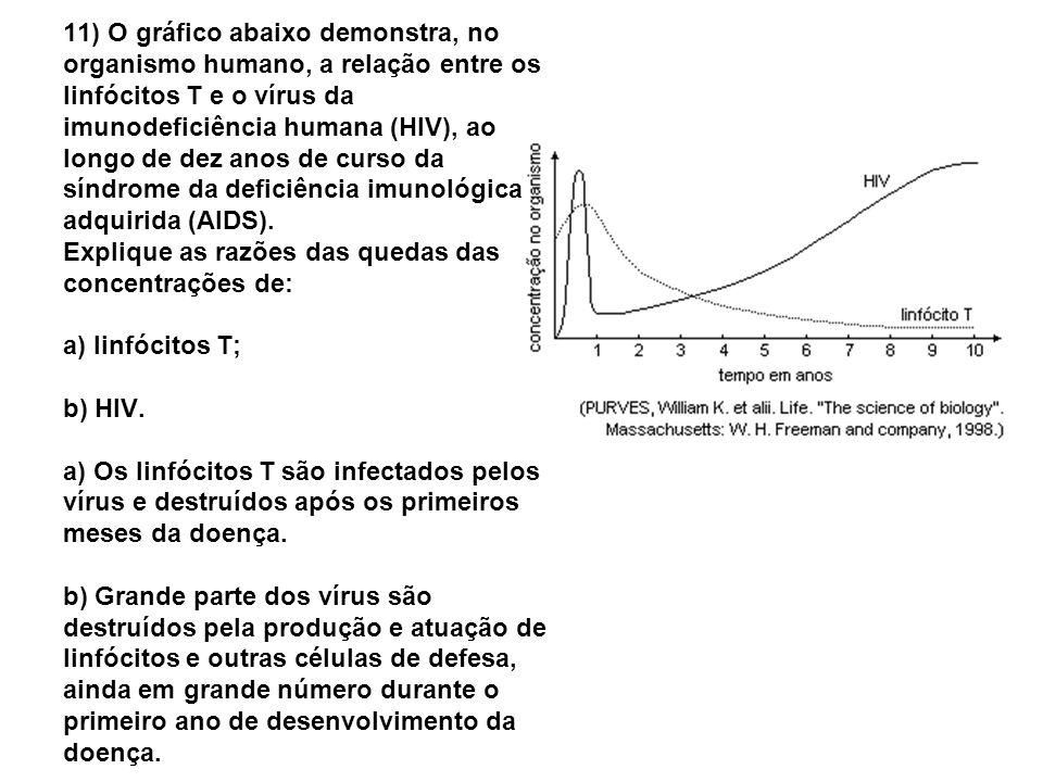 11) O gráfico abaixo demonstra, no organismo humano, a relação entre os linfócitos T e o vírus da imunodeficiência humana (HIV), ao longo de dez anos de curso da síndrome da deficiência imunológica adquirida (AIDS).