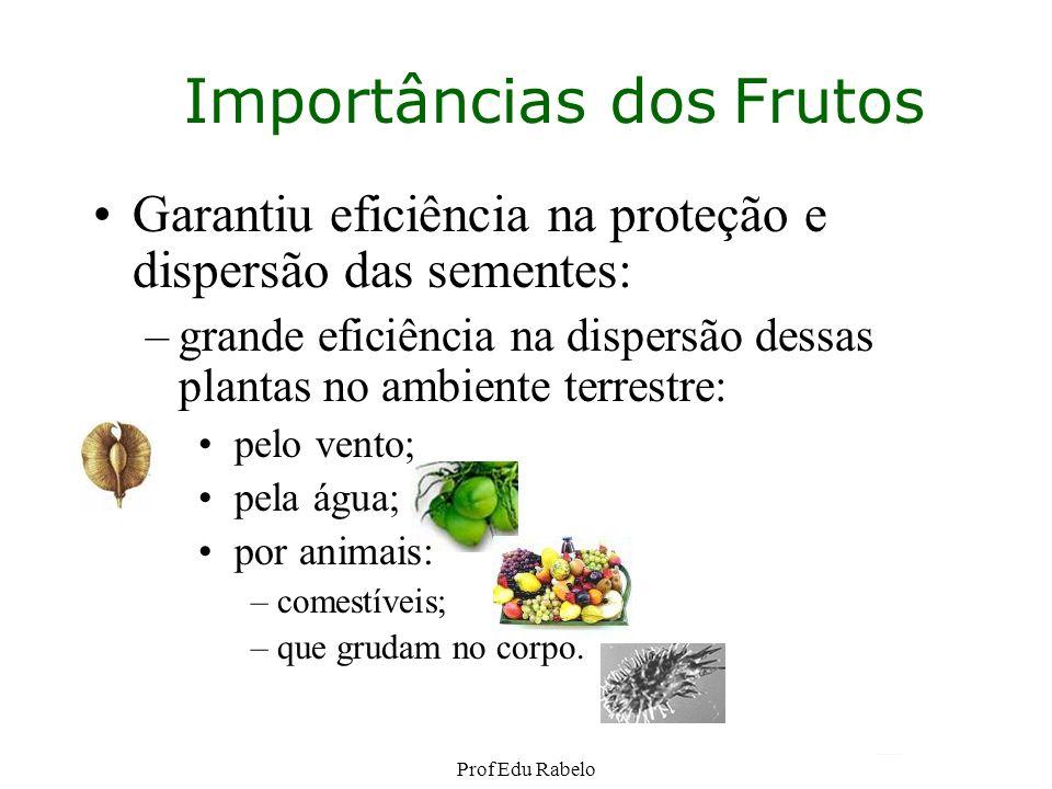 Importâncias dos Frutos