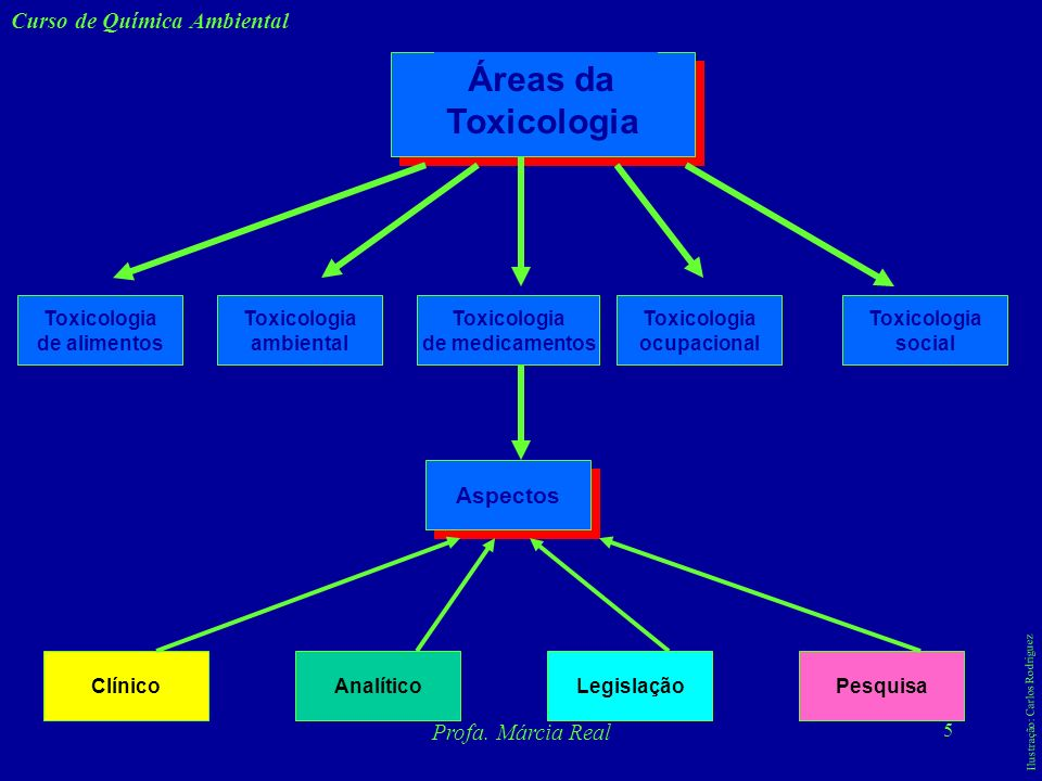 Áreas da Toxicologia Curso de Química Ambiental Aspectos