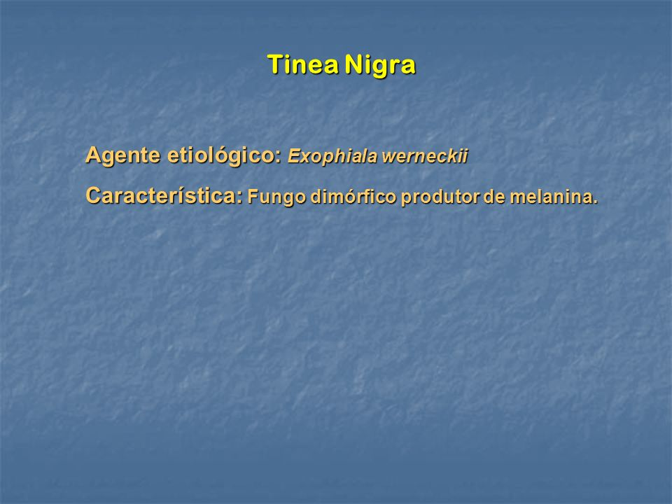 Tinea Nigra Agente etiológico: Exophiala werneckii