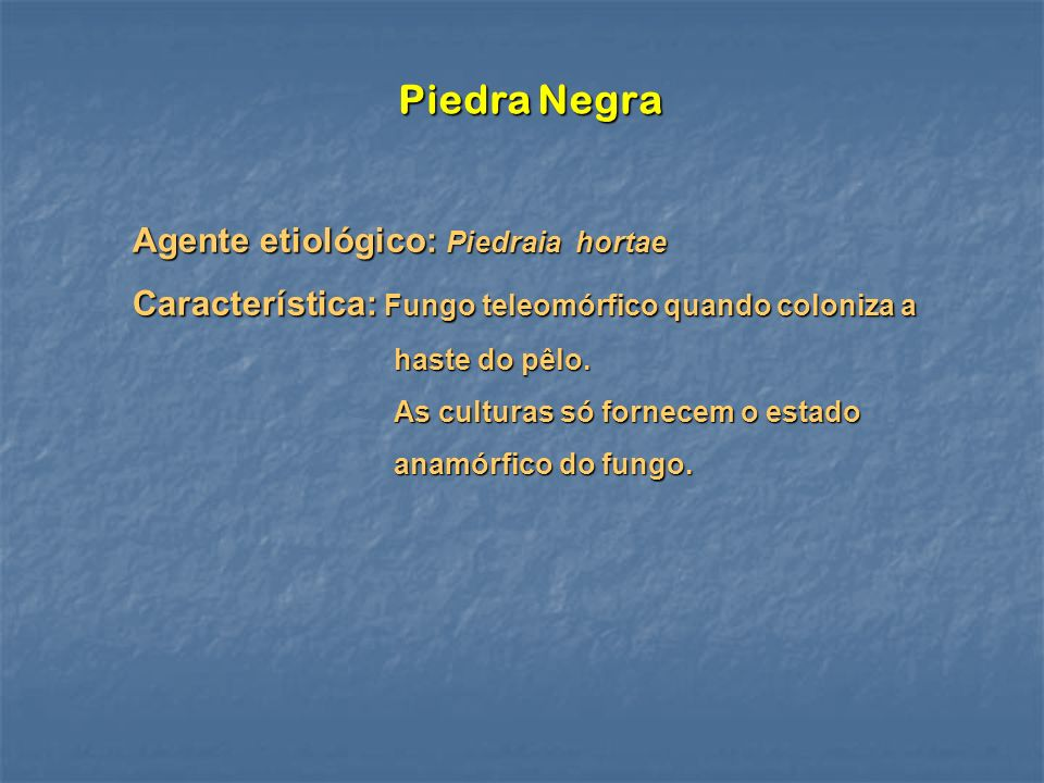 Piedra Negra Agente etiológico: Piedraia hortae