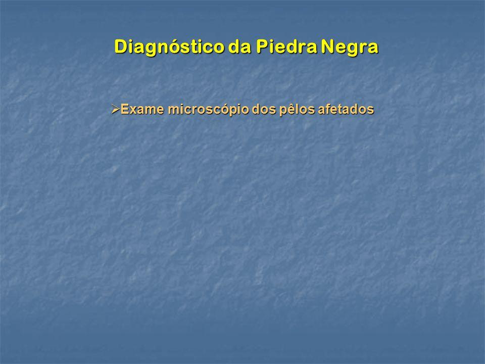 Diagnóstico da Piedra Negra