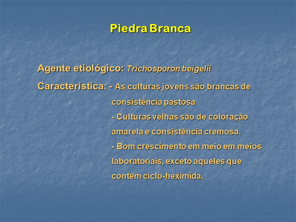 Piedra Branca Agente etiológico: Trichosporon beigelii