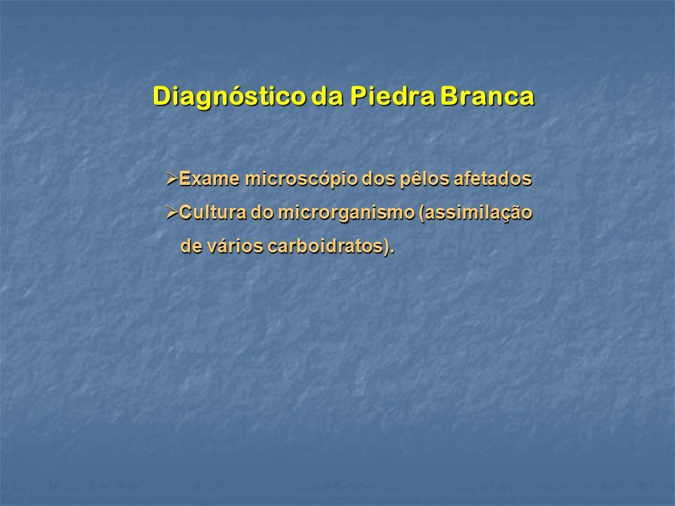 Diagnóstico da Piedra Branca