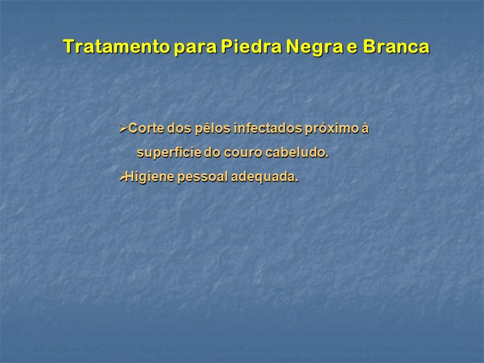 Tratamento para Piedra Negra e Branca