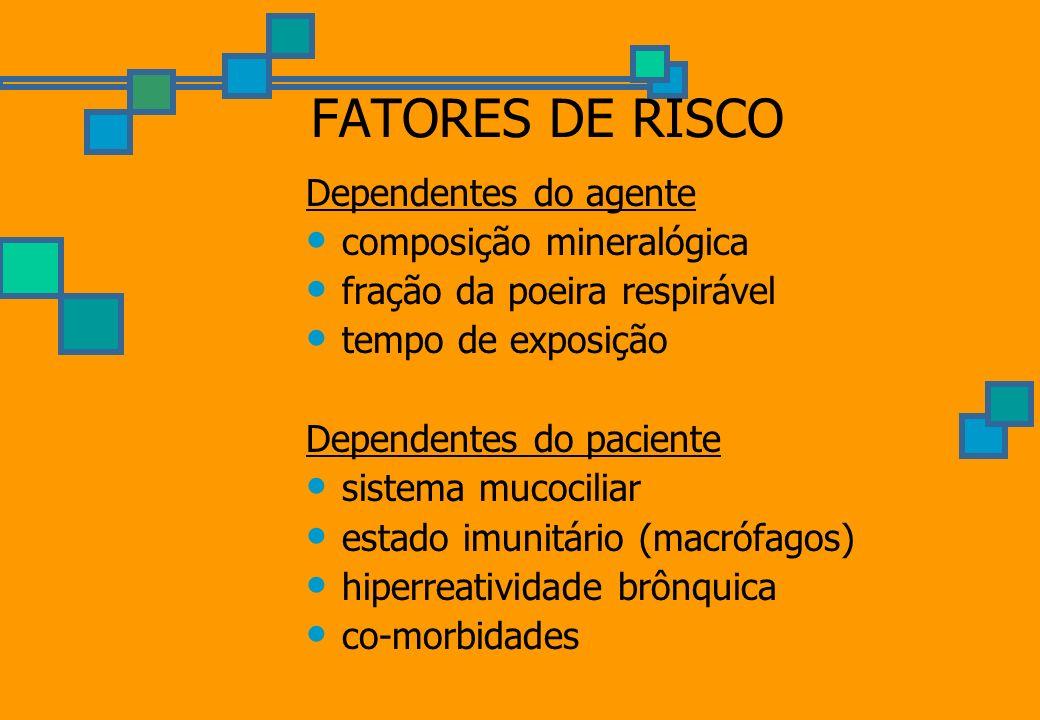 FATORES DE RISCO Dependentes do agente composição mineralógica