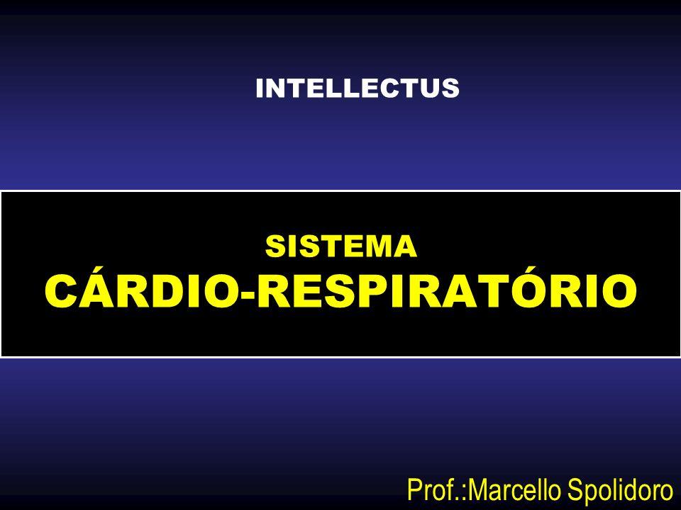 SISTEMA CÁRDIO-RESPIRATÓRIO