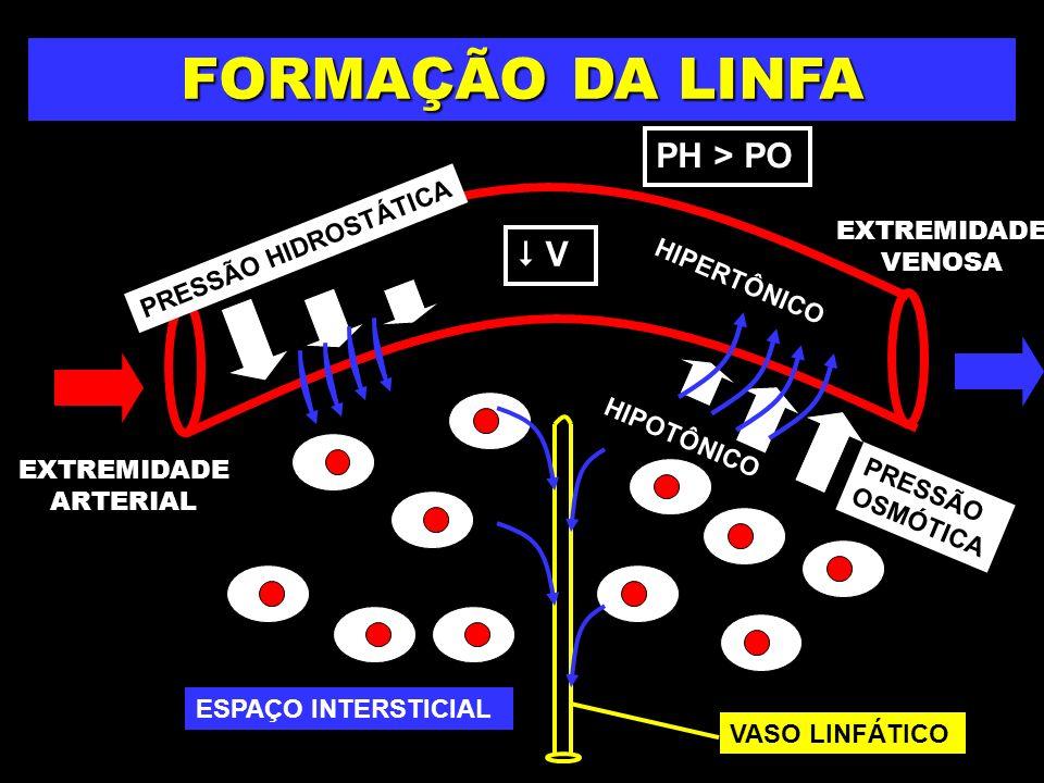 FORMAÇÃO DA LINFA PH > PO  V PRESSÃO HIDROSTÁTICA