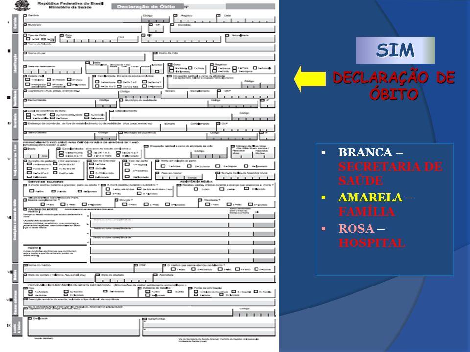 SIM DECLARAÇÃO DE ÓBITO BRANCA – SECRETARIA DE SAÚDE AMARELA – FAMÍLIA