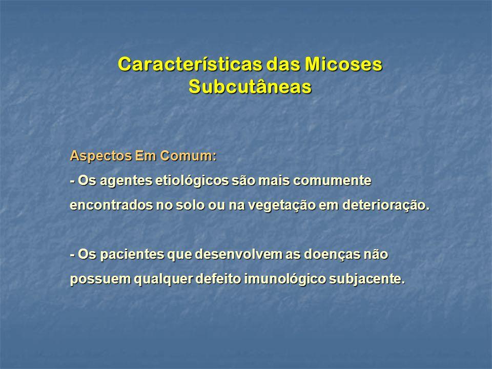 Características das Micoses Subcutâneas