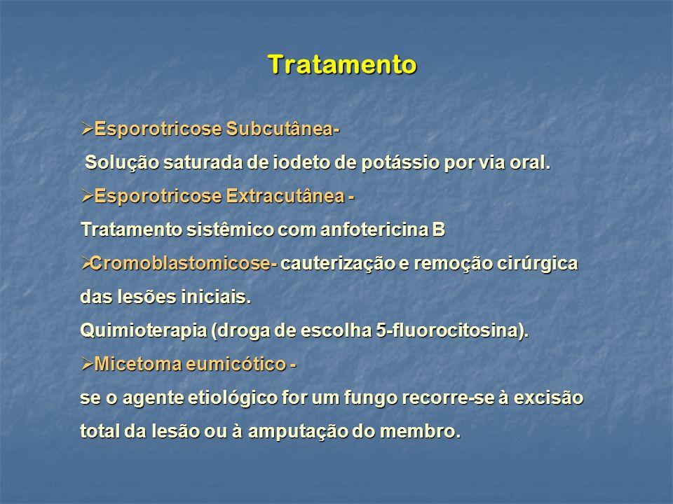 Tratamento Esporotricose Subcutânea-