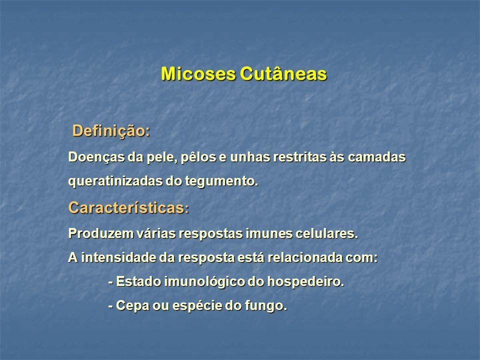 Micoses Cutâneas Definição: Características: