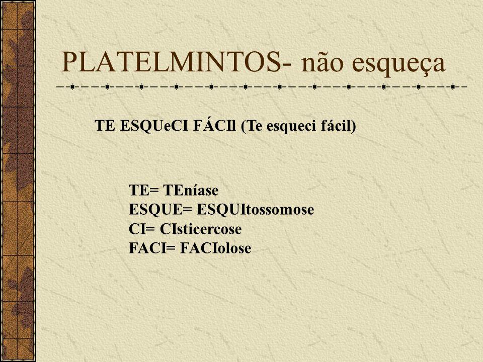 PLATELMINTOS- não esqueça