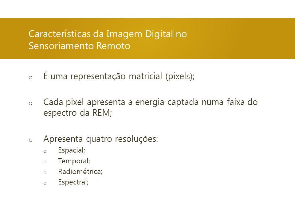Características da Imagem Digital no Sensoriamento Remoto