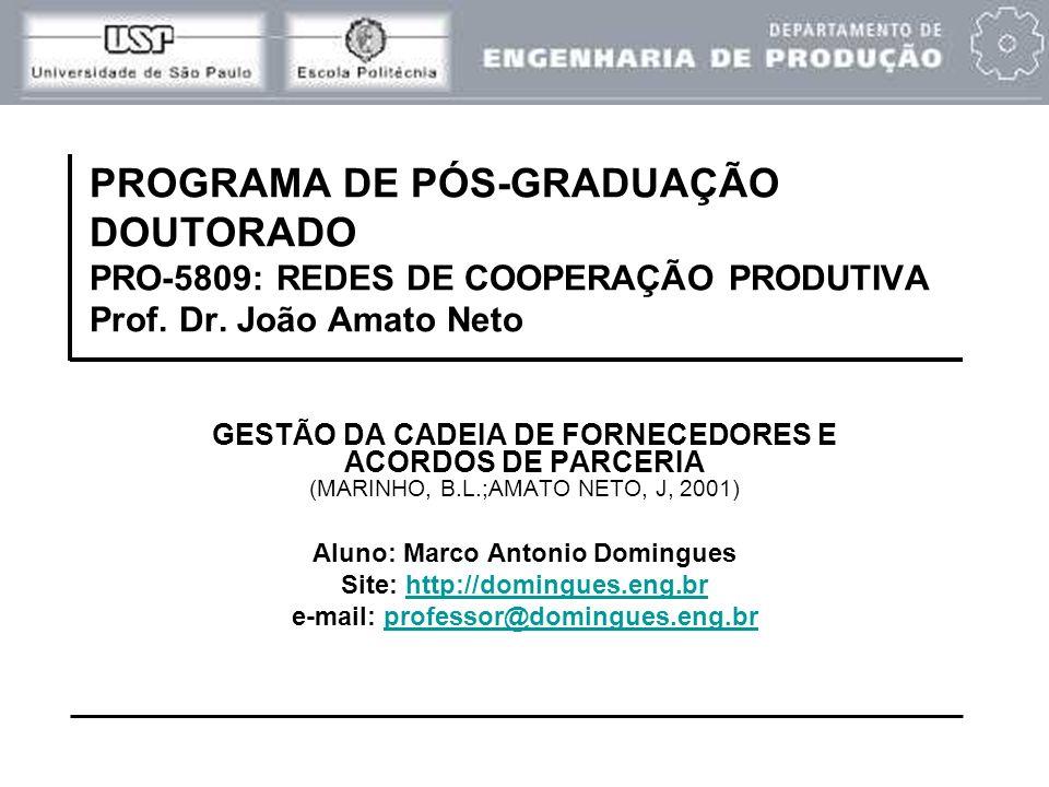 PROGRAMA DE PÓS-GRADUAÇÃO DOUTORADO PRO-5809: REDES DE COOPERAÇÃO PRODUTIVA Prof. Dr. João Amato Neto
