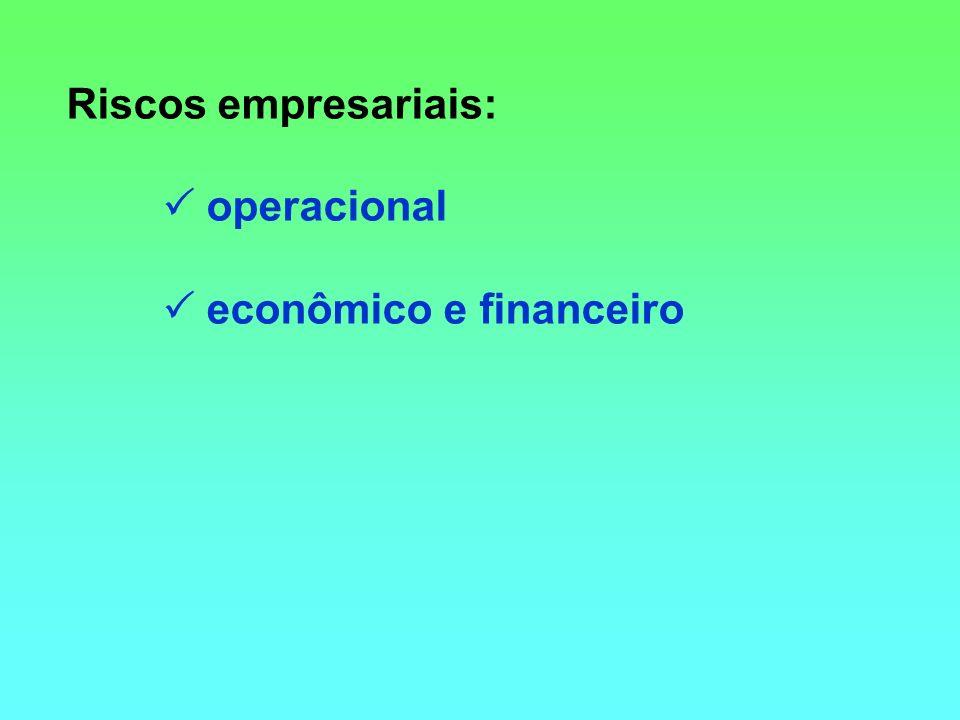 Riscos empresariais:  operacional  econômico e financeiro