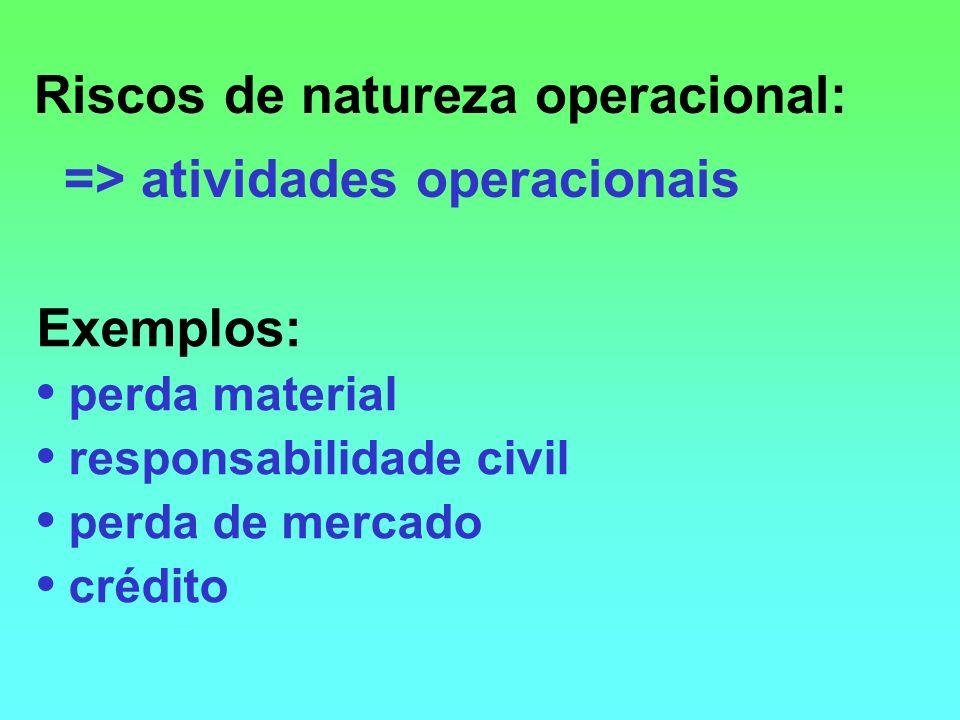 Riscos de natureza operacional: