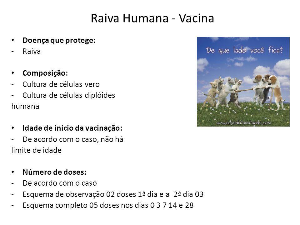 Raiva Humana - Vacina Doença que protege: Raiva Composição:
