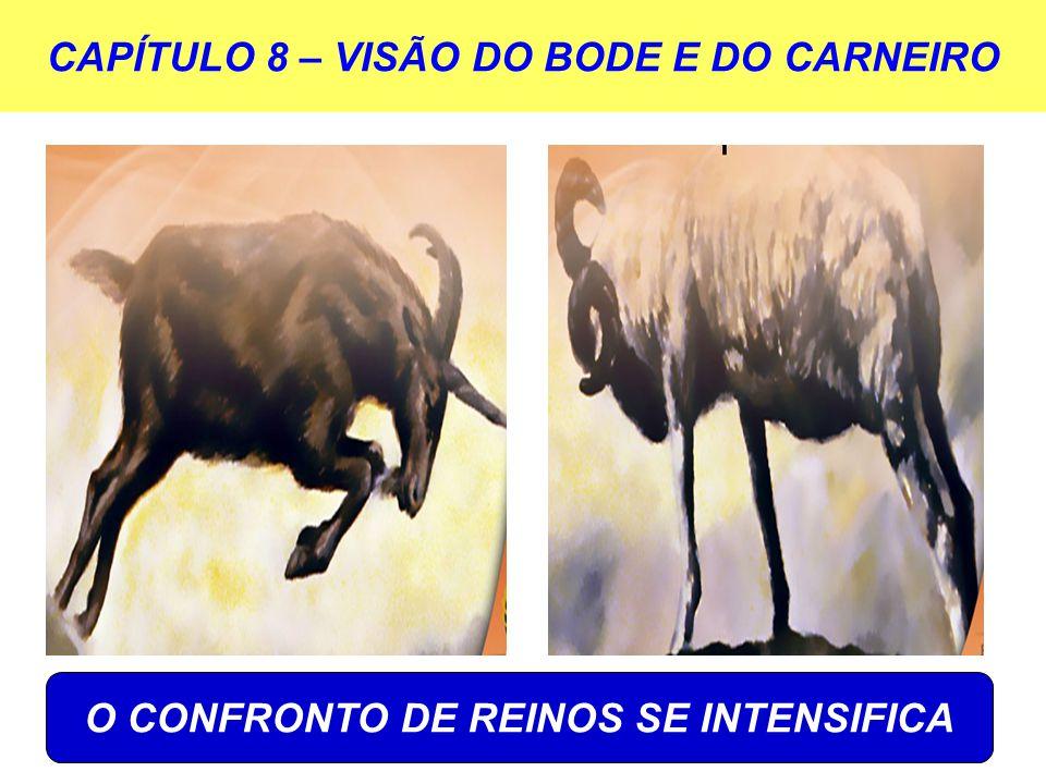 CAPÍTULO 8 – VISÃO DO BODE E DO CARNEIRO