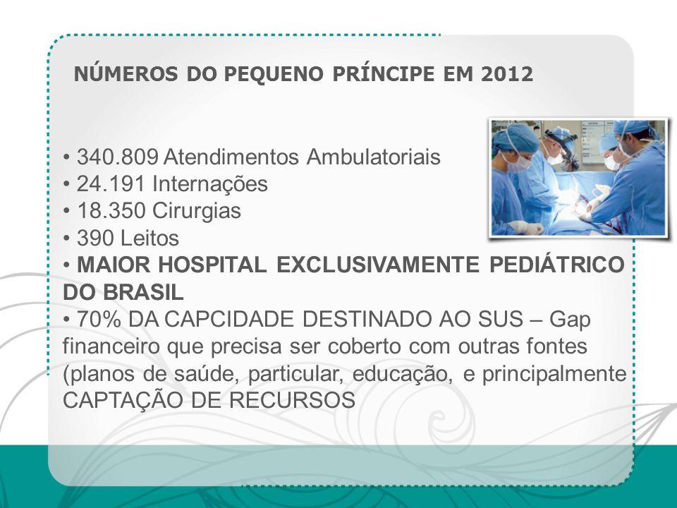 340.809 Atendimentos Ambulatoriais 24.191 Internações 18.350 Cirurgias