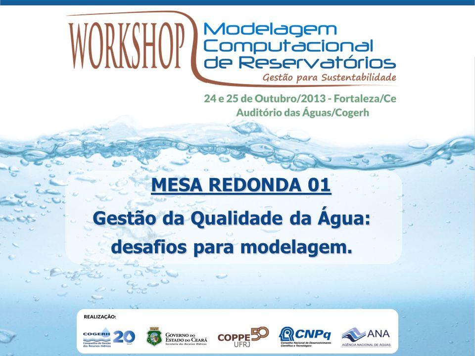 Gestão da Qualidade da Água: desafios para modelagem.