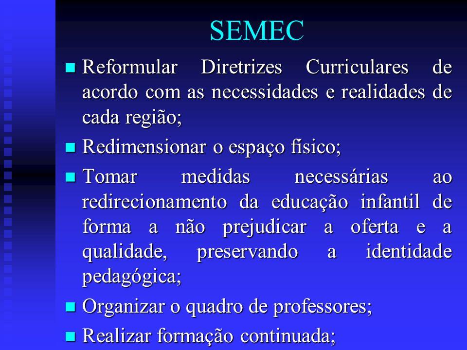 SEMECReformular Diretrizes Curriculares de acordo com as necessidades e realidades de cada região; Redimensionar o espaço físico;