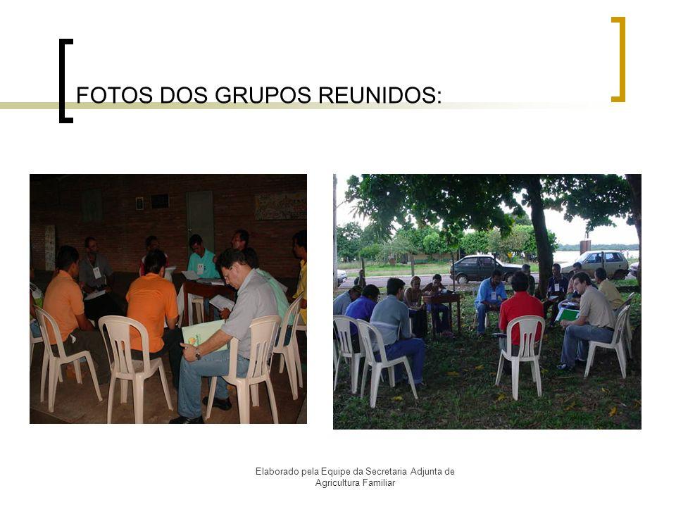 FOTOS DOS GRUPOS REUNIDOS: