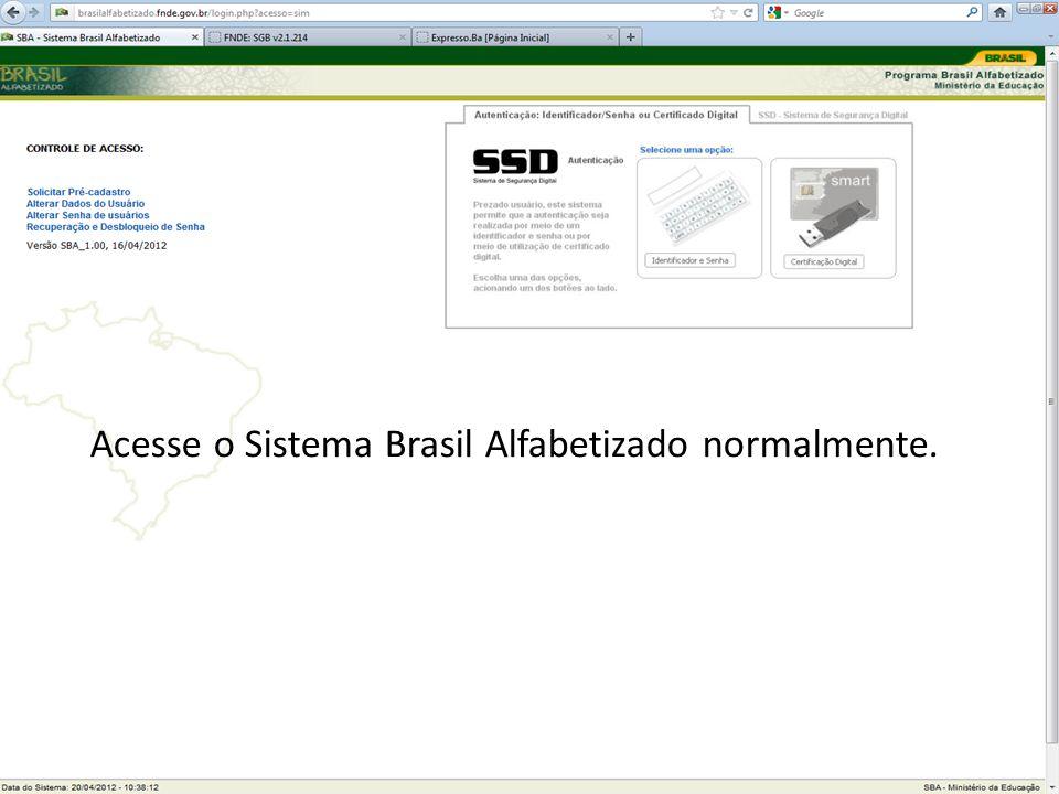 Acesse o Sistema Brasil Alfabetizado normalmente.