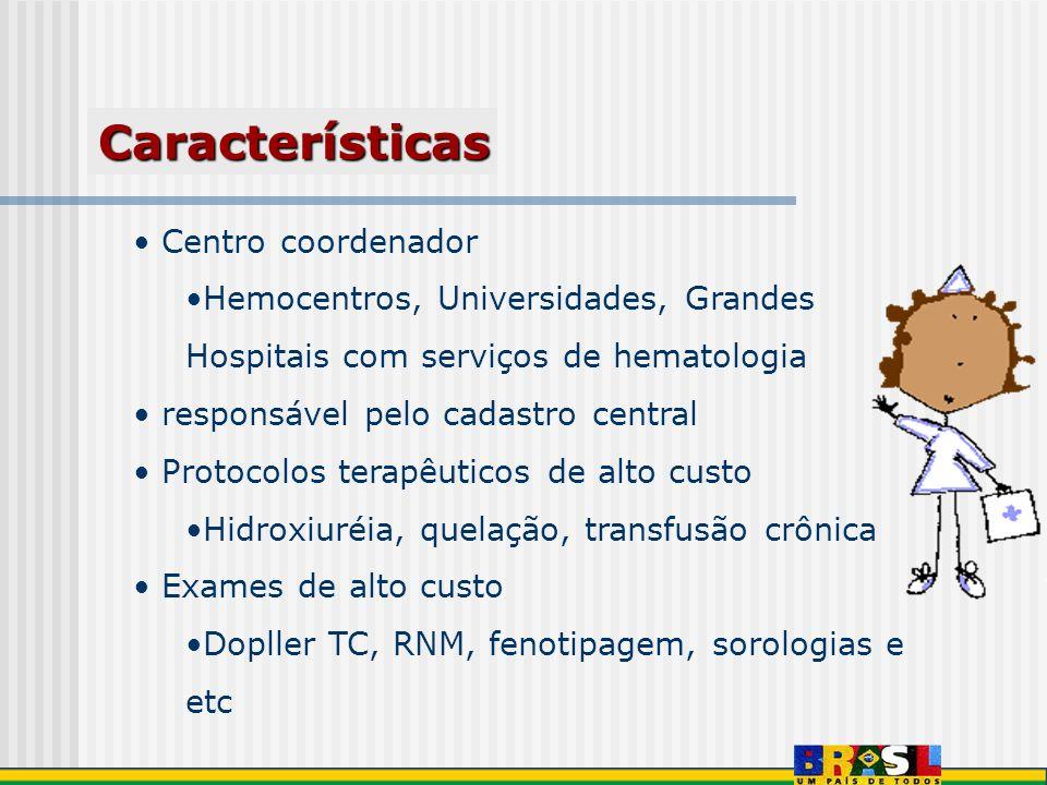 Características Centro coordenador