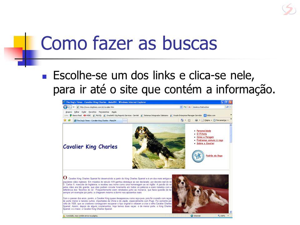 Como fazer as buscas Escolhe-se um dos links e clica-se nele, para ir até o site que contém a informação.