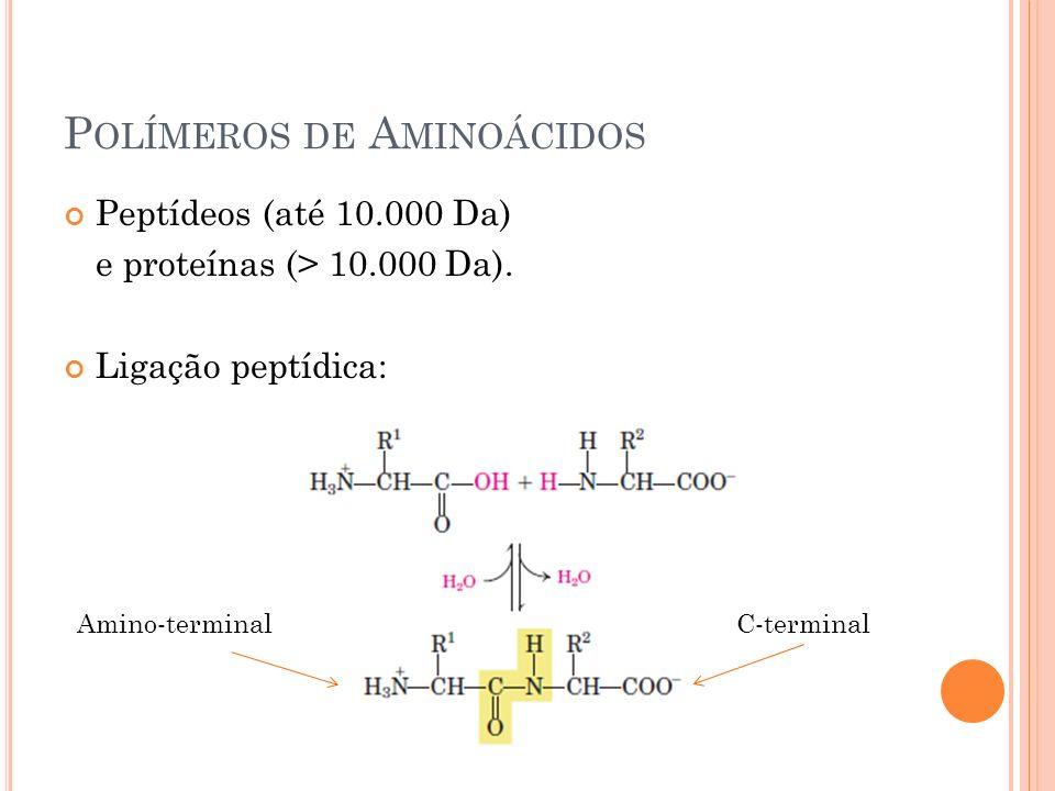 Polímeros de Aminoácidos