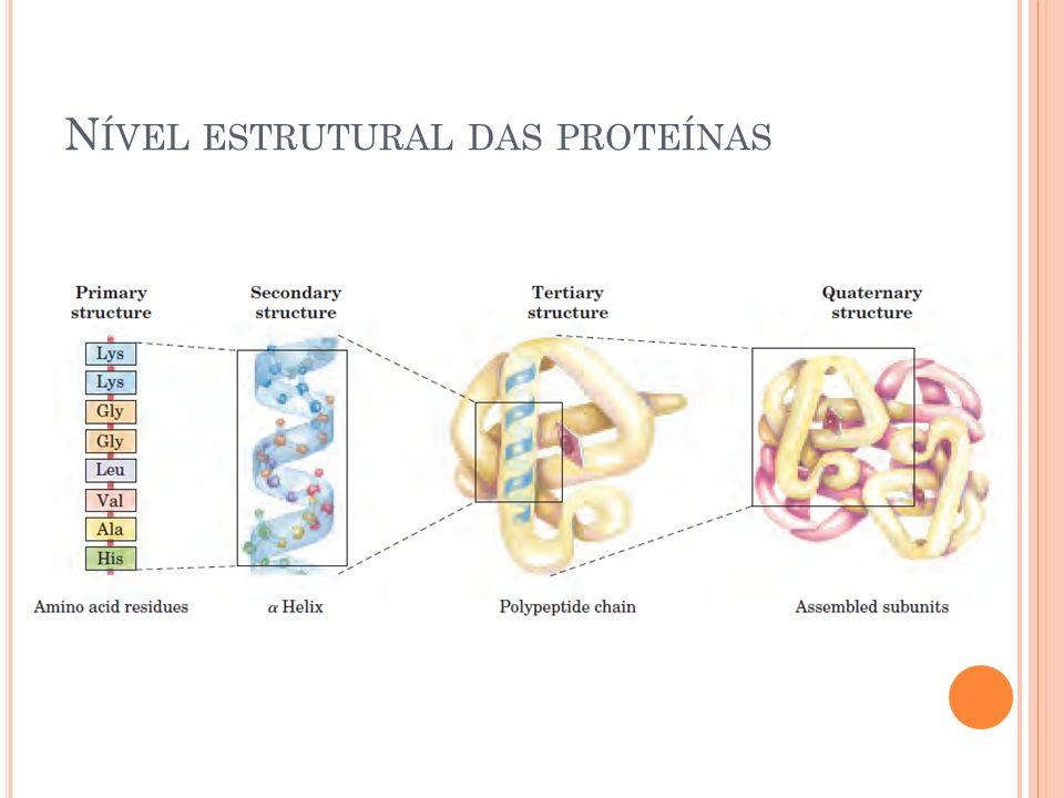 Nível estrutural das proteínas